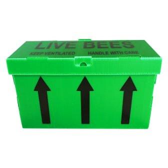 correx-box